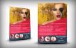 creative-brochure-design_ws_1421448129