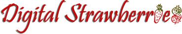 web-cms-services_ws_1466716473