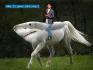 buy-photos-online-photoshopping_ws_1424743812
