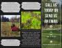 creative-brochure-design_ws_1467088738