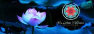 creative-logo-design_ws_1468410723