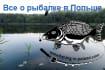 banner-ads_ws_1468416312