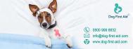 banner-ads_ws_1469115196