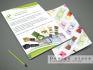 creative-brochure-design_ws_1469175835