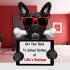 pet-modelling_ws_1469208142