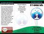 creative-brochure-design_ws_1427741912