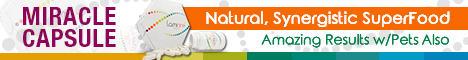 banner-ads_ws_1471440781