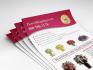creative-brochure-design_ws_1471555133