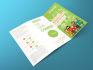 creative-brochure-design_ws_1472591194