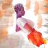 digital-illustration_ws_1472775197