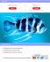 web-plus-mobile-design_ws_1473662868