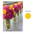 social-media-design_ws_1475627980