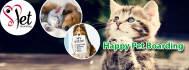 social-media-design_ws_1429005436