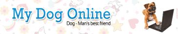 banner-ads_ws_1476547671