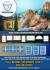 creative-brochure-design_ws_1476849238
