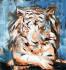 digital-illustration_ws_1476863068