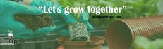social-media-design_ws_1478529629