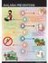 infographics_ws_1478881191