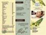 creative-brochure-design_ws_1478882373