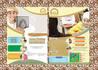 creative-brochure-design_ws_1479142400