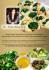 creative-brochure-design_ws_1479331888