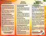 creative-brochure-design_ws_1479657011