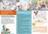 creative-brochure-design_ws_1479833901