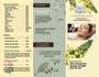 creative-brochure-design_ws_1480271255