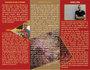 creative-brochure-design_ws_1481081601