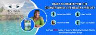 social-media-design_ws_1482308840