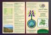 creative-brochure-design_ws_1482311258