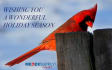 buy-photos-online-photoshopping_ws_1482414815
