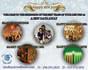 creative-brochure-design_ws_1483101139
