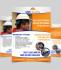 creative-brochure-design_ws_1483203341