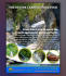 creative-brochure-design_ws_1483207531