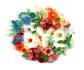 creative-logo-design_ws_1483434159