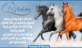 social-media-design_ws_1483543071