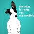 create-cartoon-caricatures_ws_1483560839