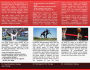 creative-brochure-design_ws_1483727459