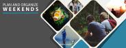 social-media-design_ws_1483745334