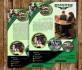 creative-brochure-design_ws_1483875641