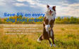 banner-ads_ws_1483878407