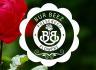 creative-logo-design_ws_1483884001