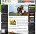 web-plus-mobile-design_ws_1485288930