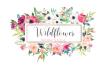 creative-logo-design_ws_1485321276