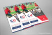 creative-brochure-design_ws_1486454083