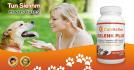 social-marketing_ws_1486503650