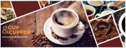 social-media-design_ws_1486666107