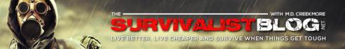banner-ads_ws_1486727927