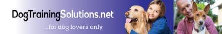 creative-logo-design_ws_1487288910
